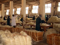 Sisal fibre grading and packing at the Dwa estate, in Kenya
